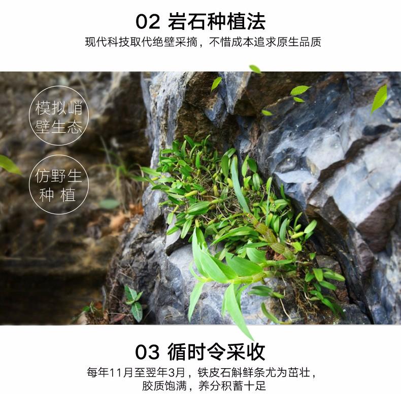 鐵皮石斛一級2#_石斛種植方法