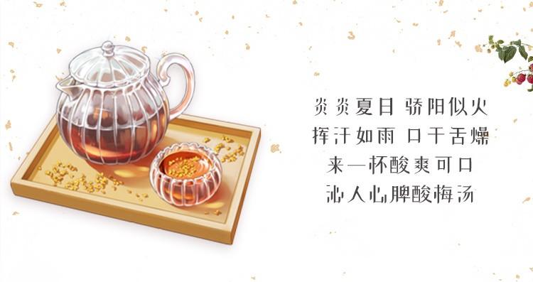 同仁堂 五味料酸梅汤茶包 100g/袋 4