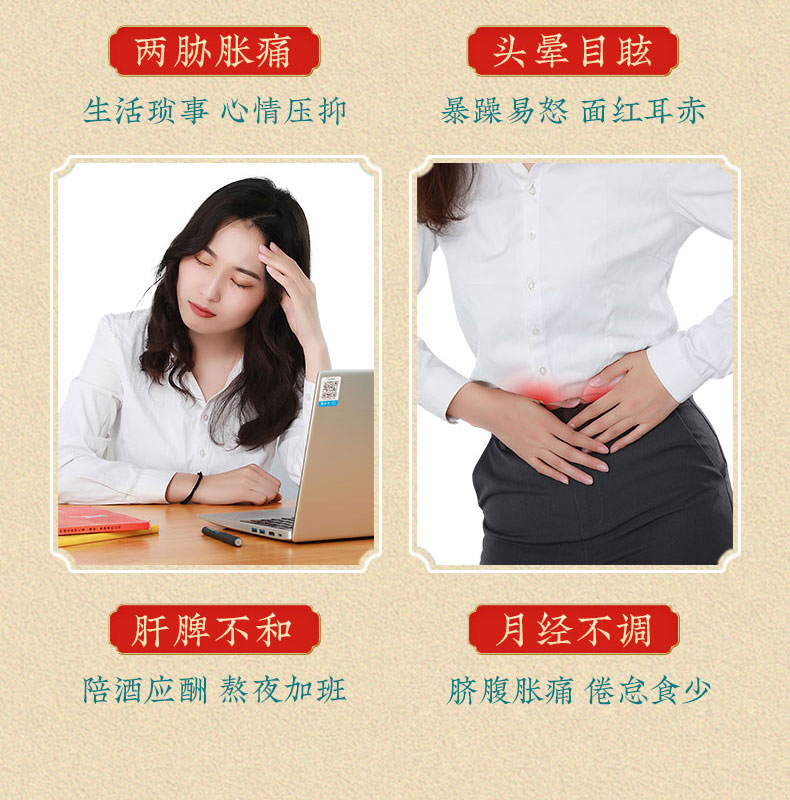 同仁堂 加味逍遥丸 6g*10/盒 6
