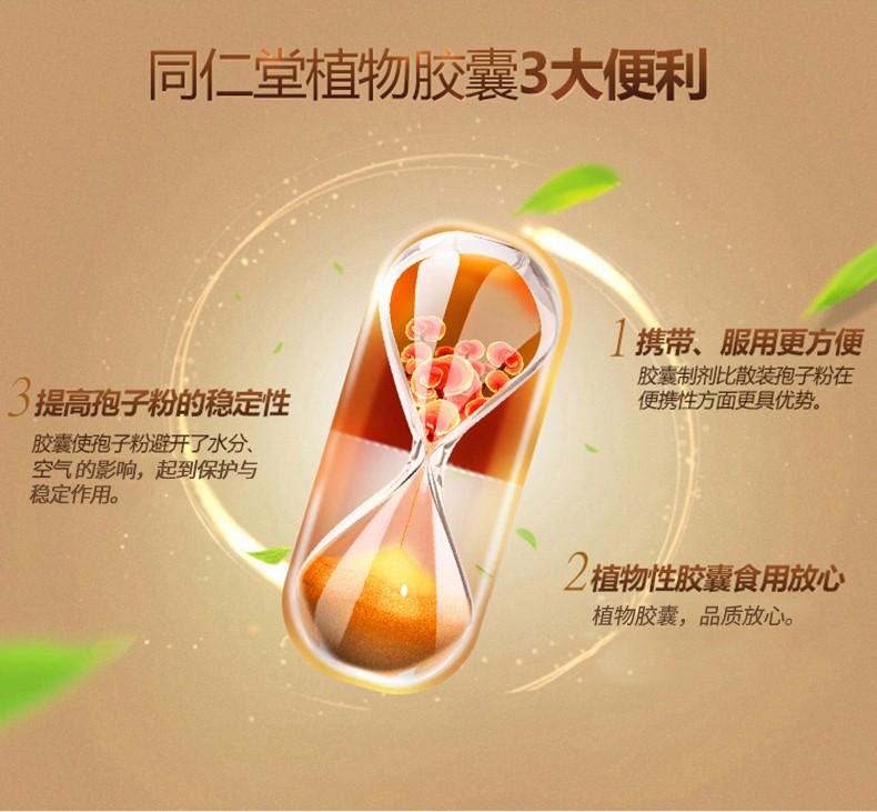 同仁堂 破壁灵芝孢子粉胶囊 0.35g/粒*90粒/盒4